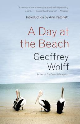 A Day at the Beach By Wolff, Geoffrey